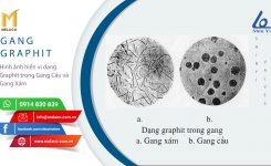 Van SHIN YI được chế tạo từ Gang Cầu – những đặc tính ưu việt